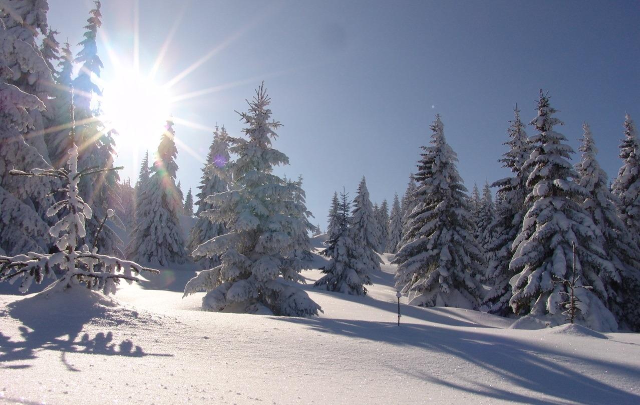 Sneg na Kopu – Žičare u funkciji, sve vri ponovo!