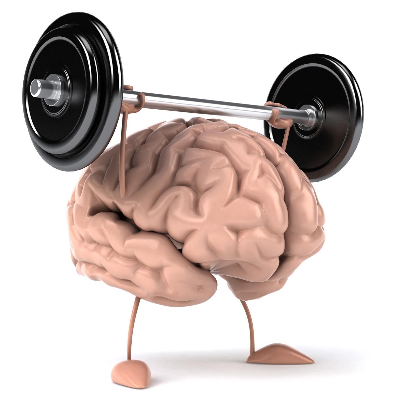 Fenomen mišićne memorije