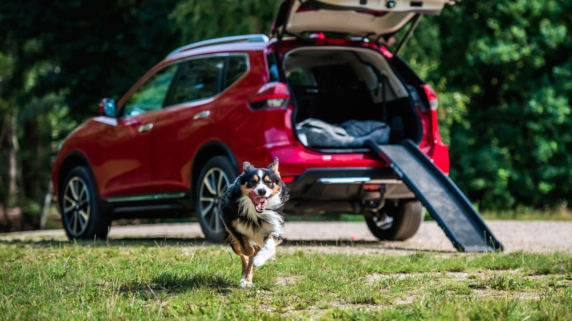 Nissan X-Trail za avanture s ljubimcima (video i galerija)
