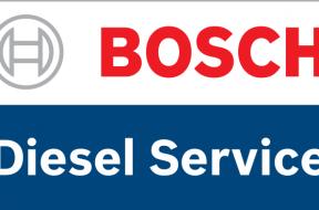 BDS_Logo