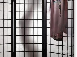 woman-behind-shoji-screen-oleksiy-maksymenko-canvas-print