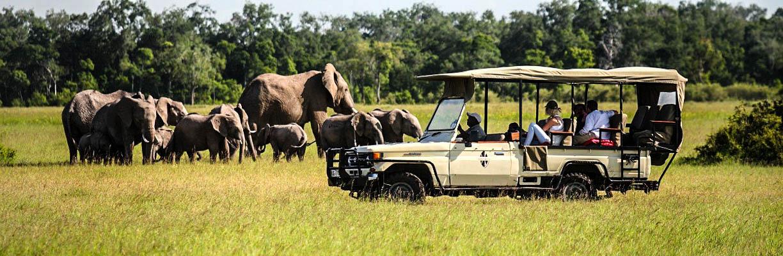 O situaciji u automobilskoj industriji Afrike govorio je čelnik Toyote