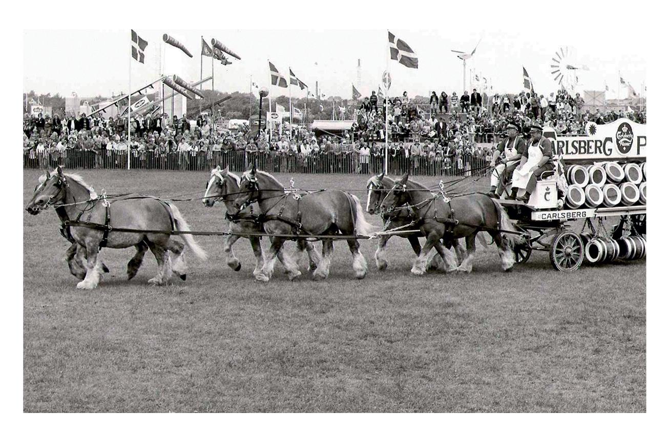 Istorija prevoza piva – konji su ponovo u modi