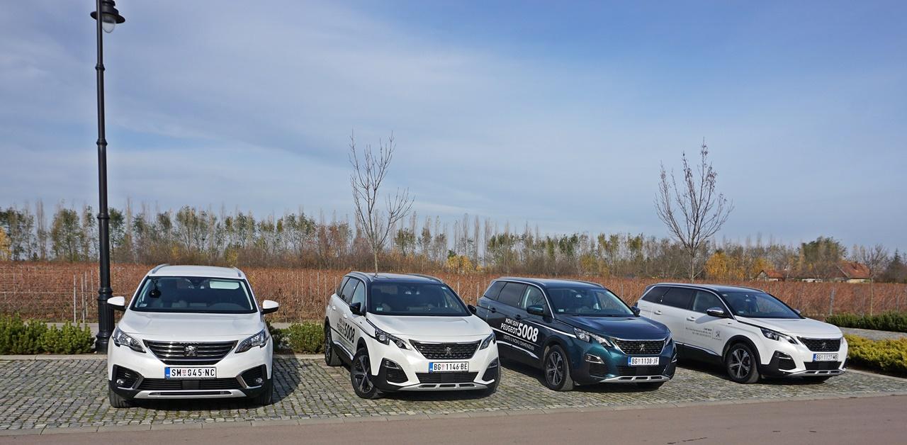 Analiza: Koji automobili se proizvode na tlu Francuske?