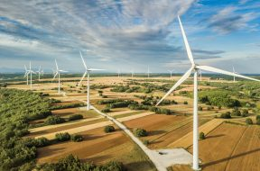 Wind turbines landscape in day light