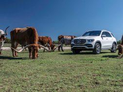 2020-mercedes-benz-gle-class-first-drive