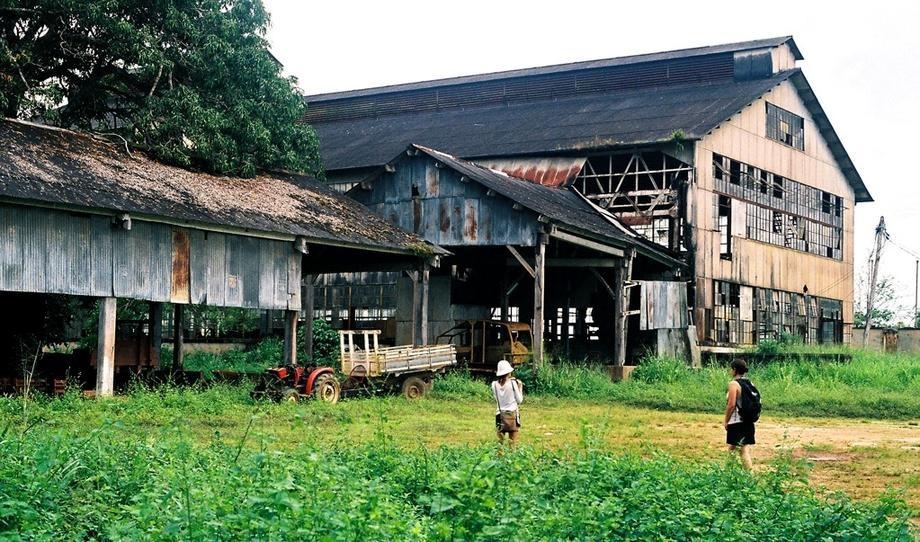 Zanimljivost dana: Kada je Henri Ford pokušao da proizvodi pneumatike u prašumi Brazila